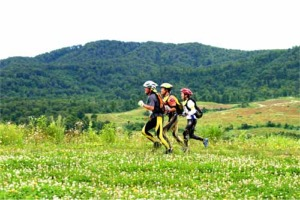 森吉山山麓高原の草花が選手を迎える
